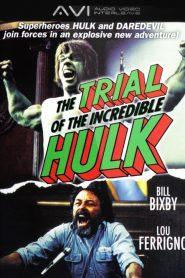 Le Procès de l'incroyable Hulk