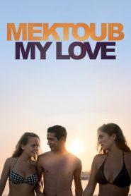 Mektoub, My Love