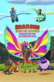 Dragons : Les Gardiens du ciel : Le secret de l'envolée lyrique